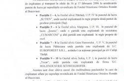 Suceava : Exploatarea ilegala a padurilor Fondului Bisericesc Ortodox Român din Bucovina