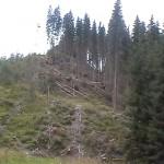 maramures-stop-distrugerii-si-degenerarii-11