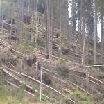 maramures-stop-distrugerii-si-degenerarii-21