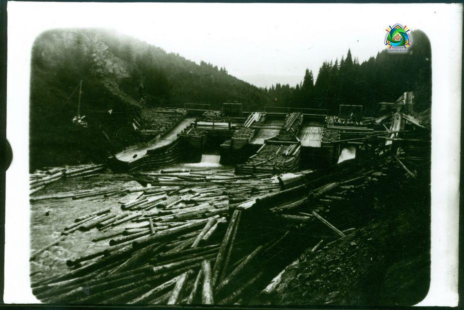 203-barajul-de-lemne-de-la-Vidra_nostra_silva